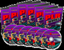 Thumbnail Video Collection for PLR Newbies!